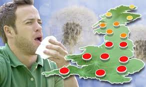 Hay Fever in British Isles